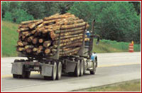 Truck Driving Careers Logging